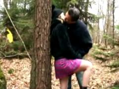 Séance de cul après une promenade en forêt